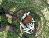 Детская рыбалка
